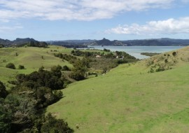 Totara North Road - 15ha