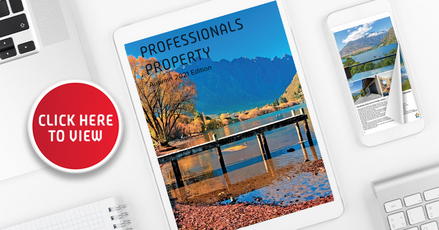 Professionals Property Magazine