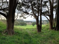 Lot 6 Porewa Road
