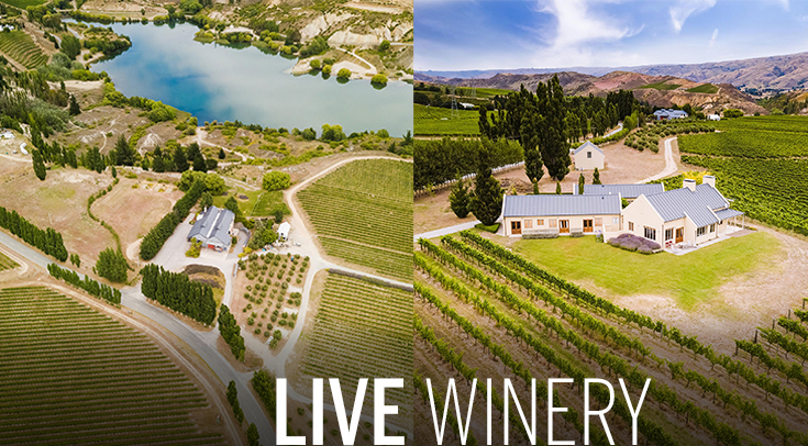 Iconic Central Otago winery up for sale
