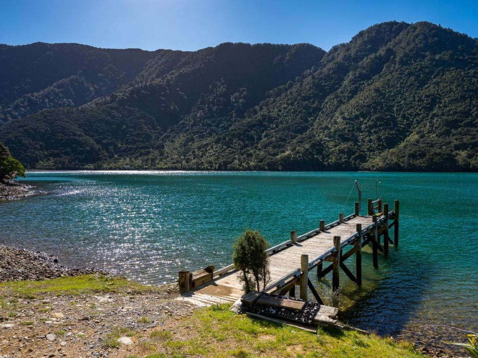 Fairy Bay, Pelorus Sounds