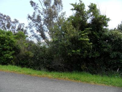 16-petersons-hill-road-stewart-island